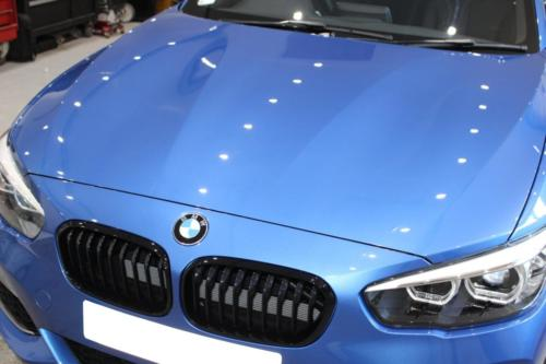 Car Paint Protection Opticoat Pro +